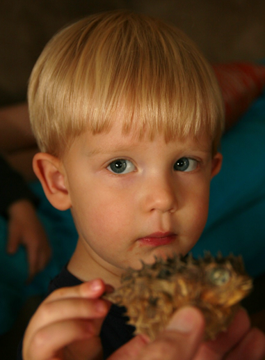 Owen is concerned about the prickly blowfish