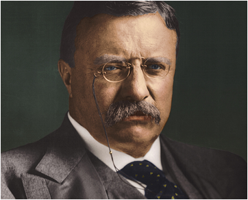Description: http://cp91279.biography.com/1000509261001/1000509261001_2043784697001_Theodore-Roosevelt-Sagamore-Hill.jpg